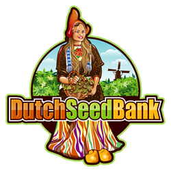 Dutch Seed Company