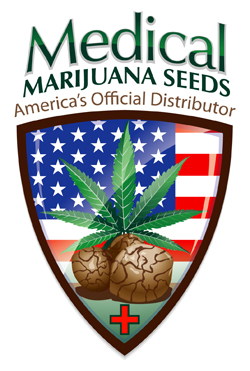 Medical Marijuana Seed Company